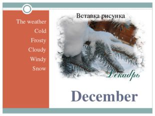December The weather Cold Frosty Cloudy Windy Snow