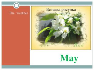 May The weather