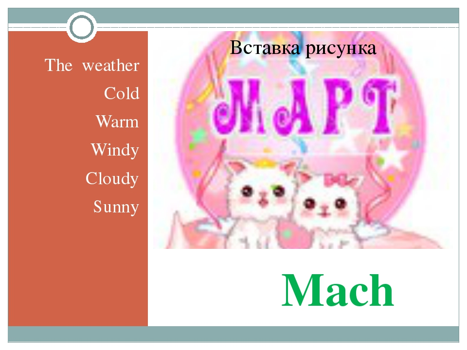 Mach The weather Cold Warm Windy Cloudy Sunny