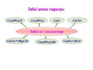 Табиғи қосылыстар Табиғатта таралуы CaSO4*2H2O CaCO3 CaCO3*2MgCO3 Ca3(PO4)2