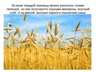 Из муки твердой пшеницы можно раскатать тонкие лепешки , из нее получаются хо