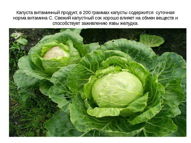 Капуста витаминный продукт, в 200 граммах капусты содержится суточная норма в...
