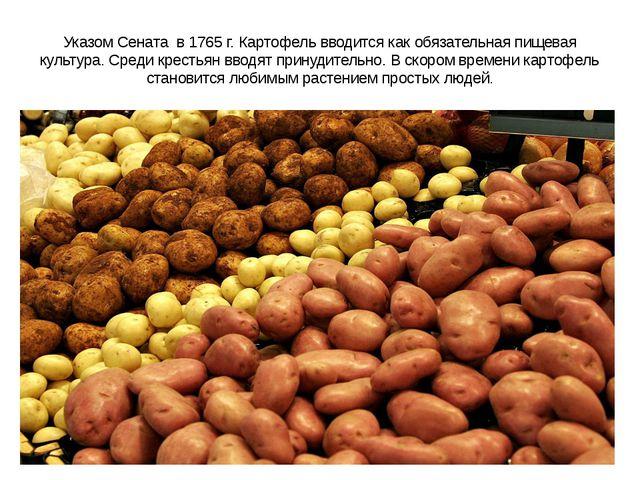 Указом Сената в 1765 г. Картофель вводится как обязательная пищевая культура....