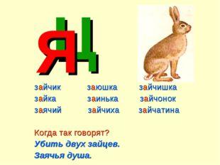 зайчик заюшка зайчишка зайка заинька зайчонок заячий зайчиха зайчатина Когда