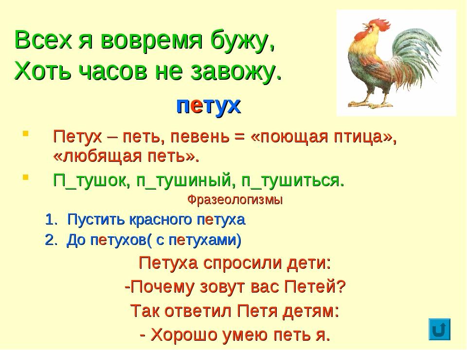 Всех я вовремя бужу, Хоть часов не завожу. Петух – петь, певень = «поющая пти...