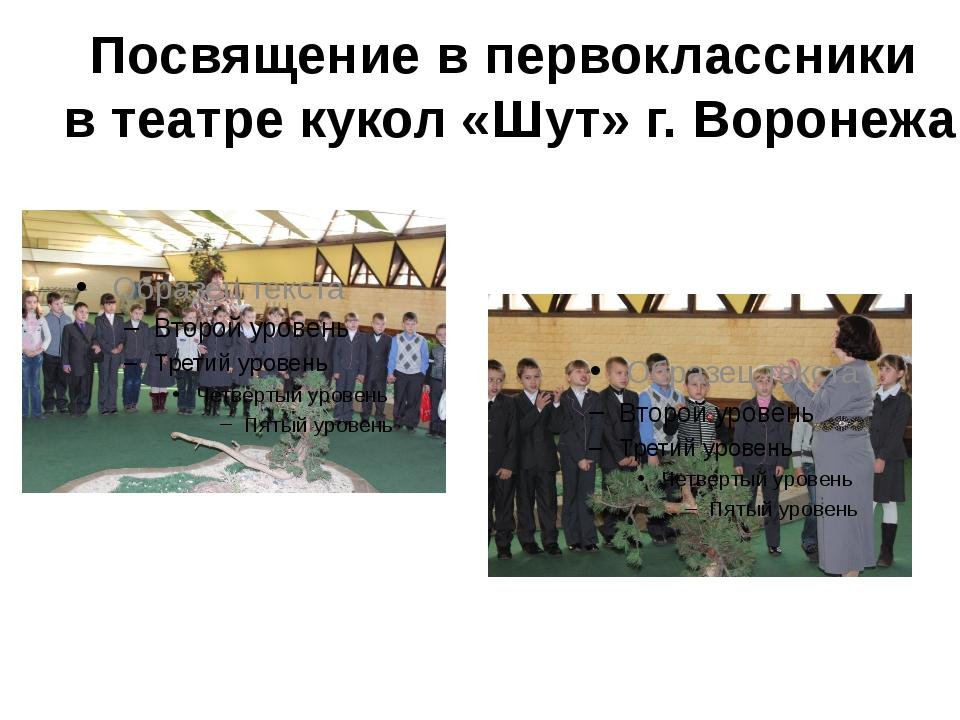 Посвящение в первоклассники в театре кукол «Шут» г. Воронежа