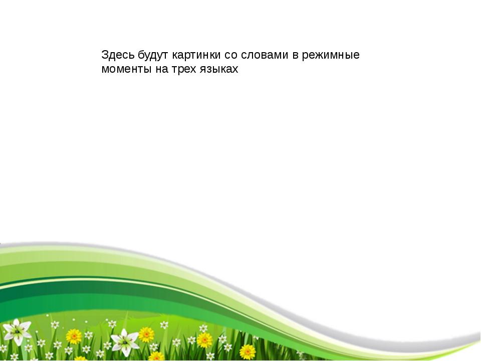 Здесь будут картинки со словами в режимные моменты на трех языках ProPowerPo...
