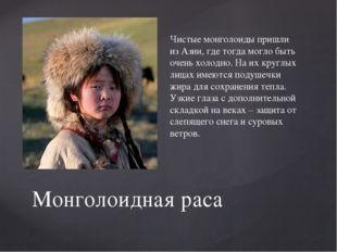 Чистые монголоиды пришли из Азии, где тогда могло быть очень холодно. На их к