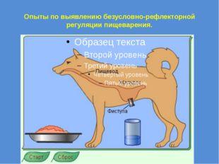 Опыты по выявлению безусловно-рефлекторной регуляции пищеварения.