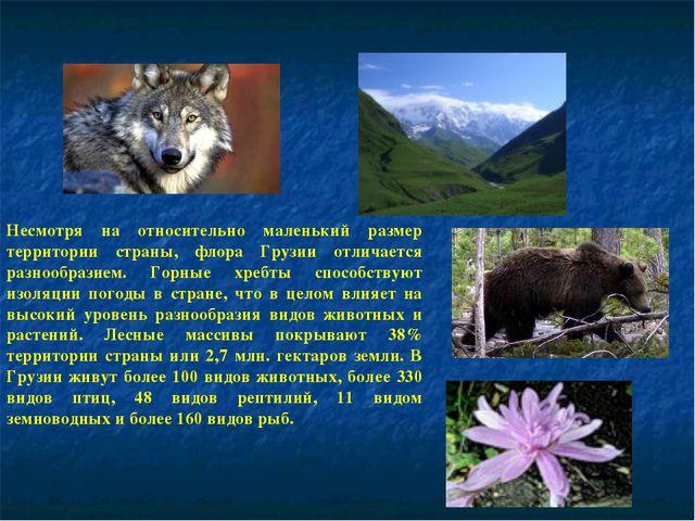 Несмотря на относительно маленький размер территории страны, флора Грузии отл...