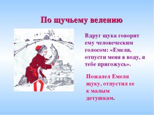 Вдруг щука говорит ему человеческим голосом: «Емеля, отпусти меня в воду, я т