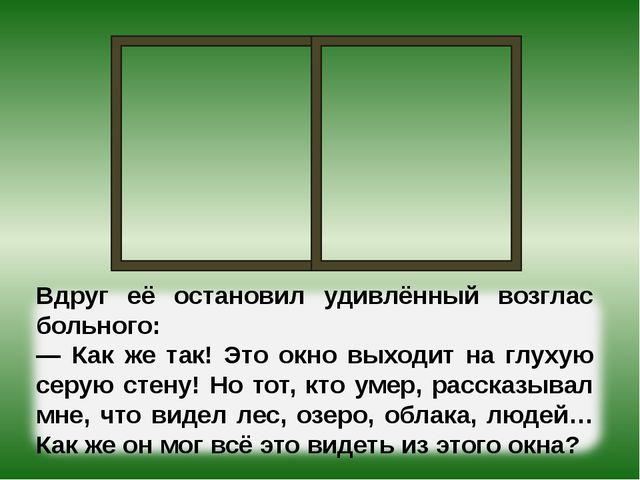 Вдруг её остановил удивлённый возглас больного: — Как же так! Это окно выходи...