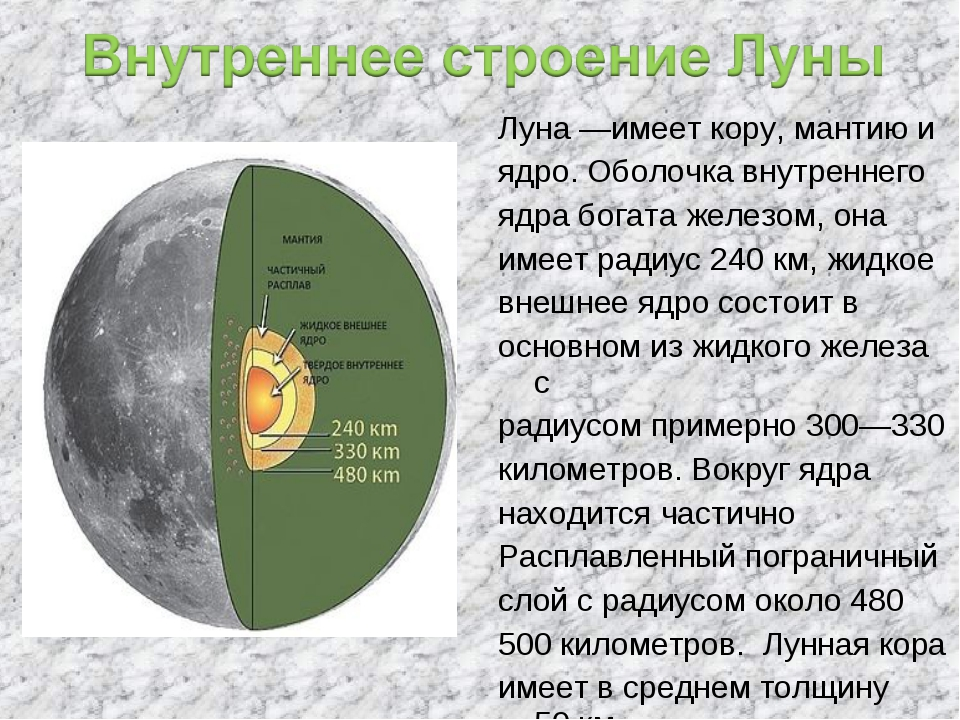 Луна—имеет кору, мантию и ядро. Оболочка внутреннего ядра богата железом, он...
