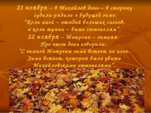 """21 ноября – в Михайлов день – в старину судили-рядили о будущей зиме: """"Коли и"""