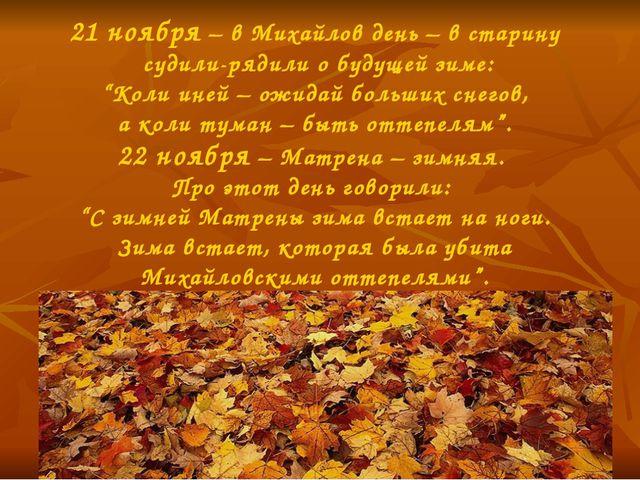 """21 ноября – в Михайлов день – в старину судили-рядили о будущей зиме: """"Коли и..."""