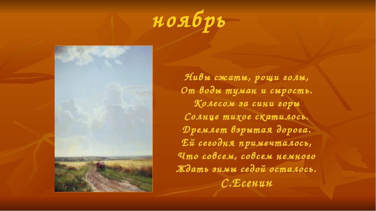 ноябрь Нивы сжаты, рощи голы, От воды туман и сырость. Колесом за сини горы С...
