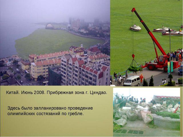 Китай. Июнь 2008. Прибрежная зона г. Циндао. Здесь было запланировано проведе...