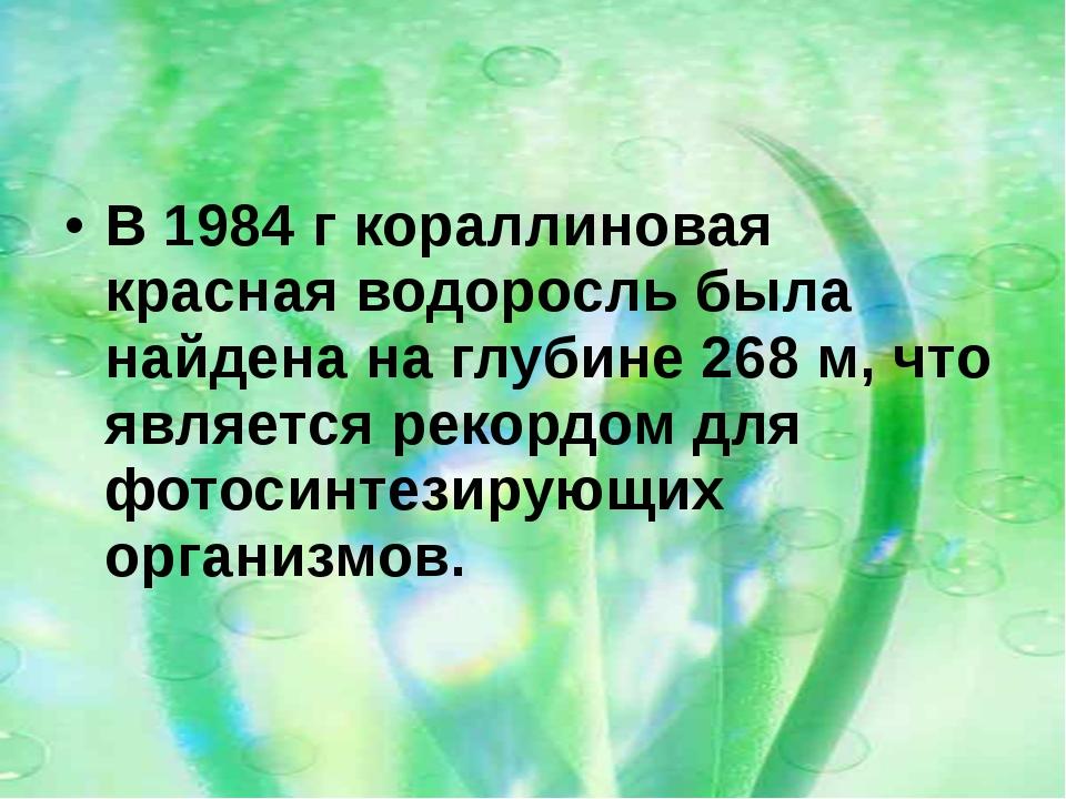 В 1984г кораллиновая красная водоросль была найдена на глубине 268м, что яв...