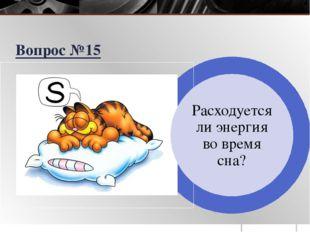Расходуется ли энергия во время сна? Вопрос №15