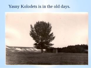 Yasnij Kolodets Yasny Kolodets is in the old days.