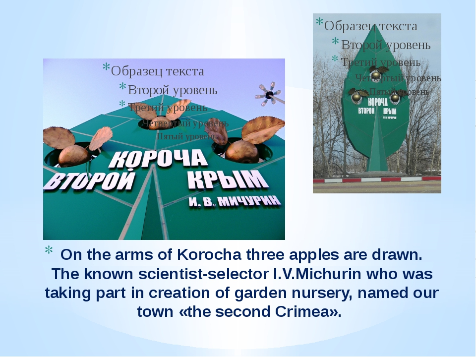 On the arms of Korocha three apples are drawn. The known scientist-selector I...