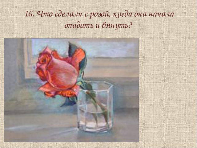 16. Что сделали с розой, когда она начала опадать и вянуть?
