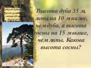 Задача № 2 Высота дуба 35 м, липы на 10 м ниже, чем дуба, а высота сосны на 1