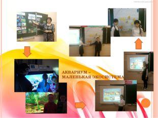 АКВАРИУМ – МАЛЕНЬКАЯ ЭКОСИСТЕМА Проект: АКВАРИУМ - МАЛЕНЬКАЯ ЭКОСИСТЕМА (изу
