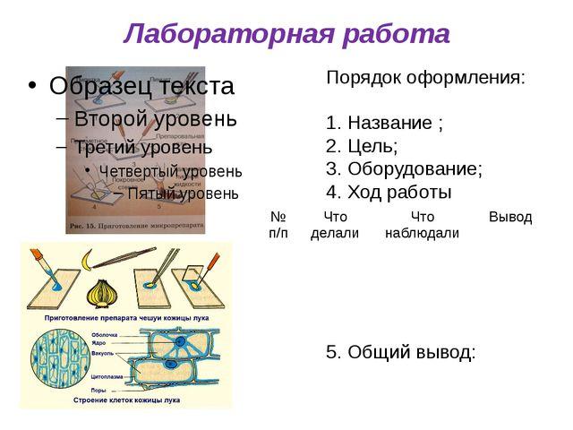 Лабораторная работа Порядок оформления: Название ; Цель; Оборудование; Ход ра...