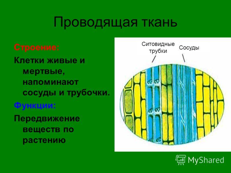 hello_html_47260120.jpg