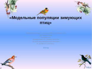 «Модельные популяции зимующих птиц» Выполнила ученица 9 «а» класса МБОУ «Гим