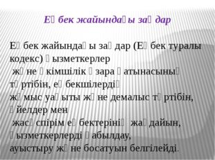 Еңбек жайындағы заңдар Еңбек жайындағы заңдар (Еңбек туралы кодекс) қызметкер