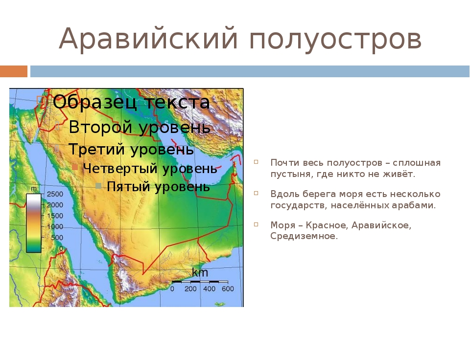 Аравийский полуостров Почти весь полуостров – сплошная пустыня, где никто не...