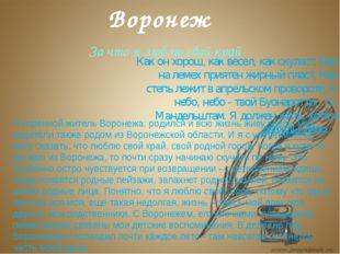 Я коренной житель Воронежа: родился и всю жизнь живу здесь, мои родители такж