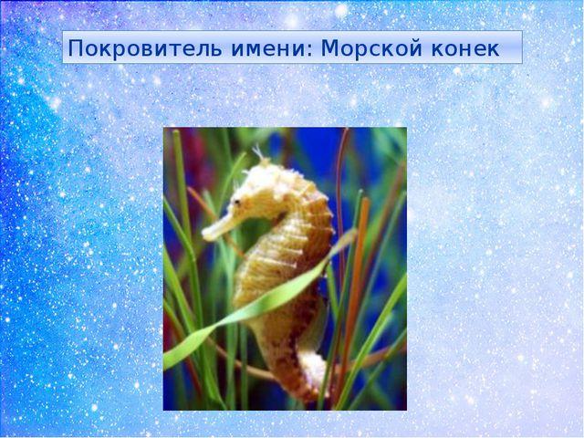 Покровитель имени: Морской конек