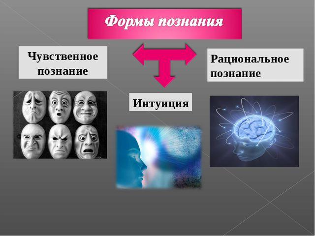 Чувственное познание Интуиция