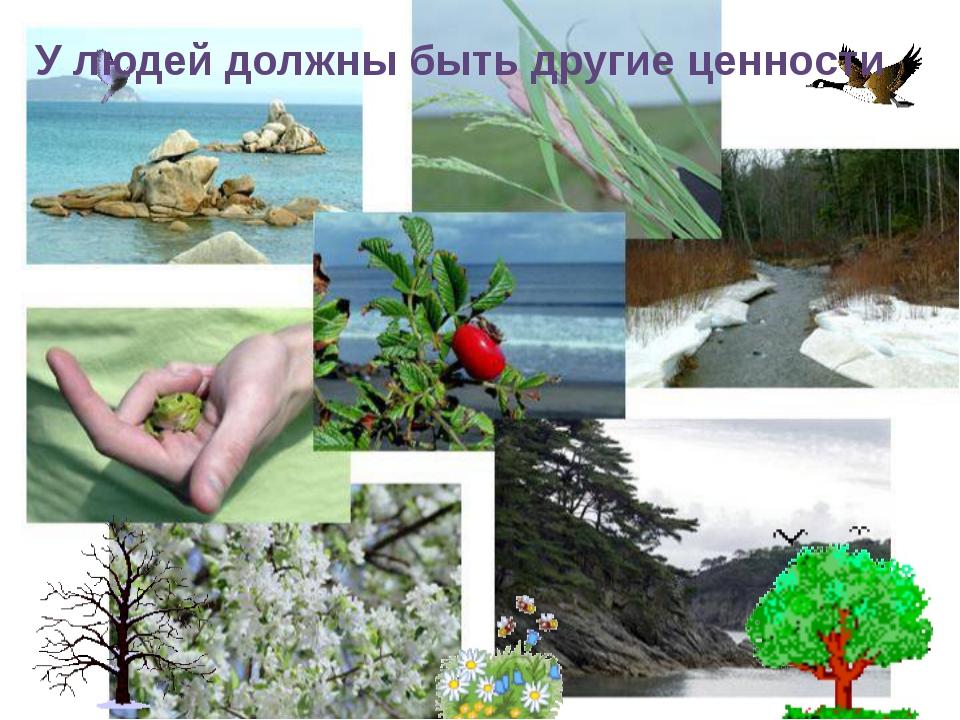Природа-наше истинное богатство! У людей должны быть другие ценности