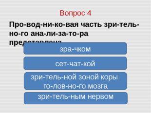 Вопрос 4 Проводниковая часть зрительного анализатора представлена