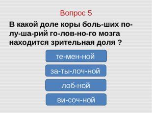 Вопрос 5 В какой доле коры больших полушарий головного мозга находится