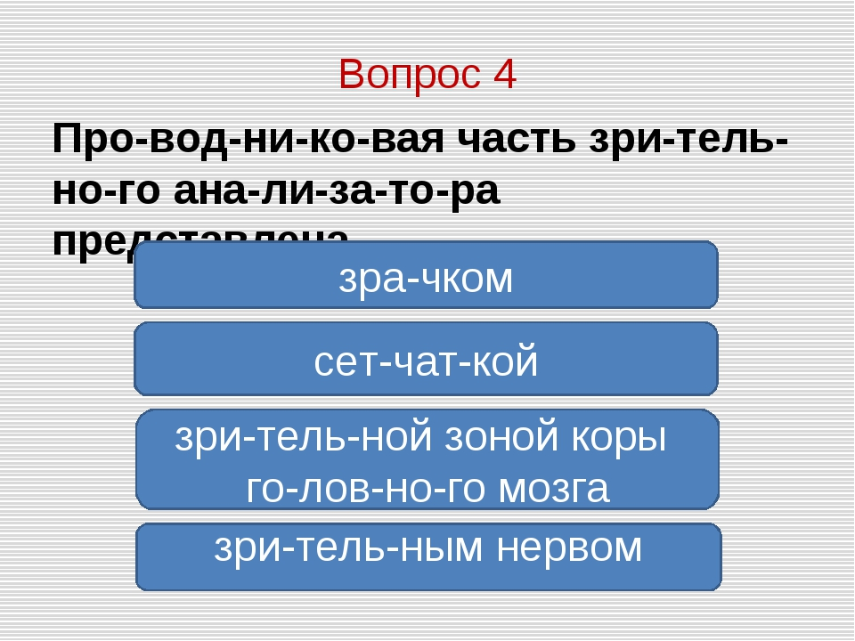 Вопрос 4 Проводниковая часть зрительного анализатора представлена...