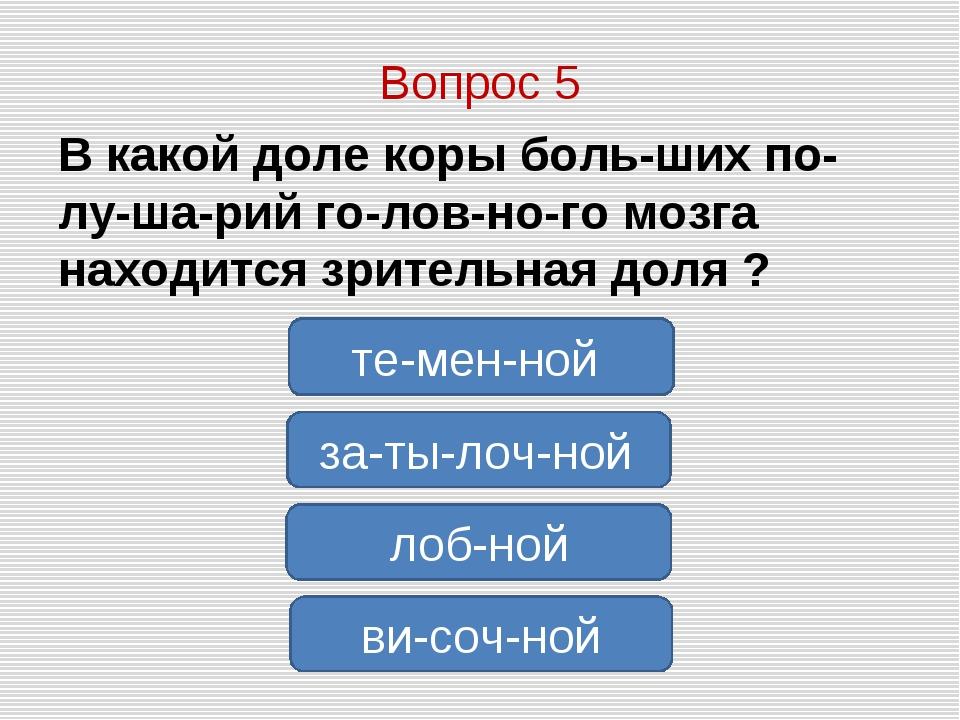 Вопрос 5 В какой доле коры больших полушарий головного мозга находится...