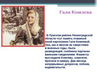 ВЛужском районе Ленинградской области чтут память отважной юной партизанки