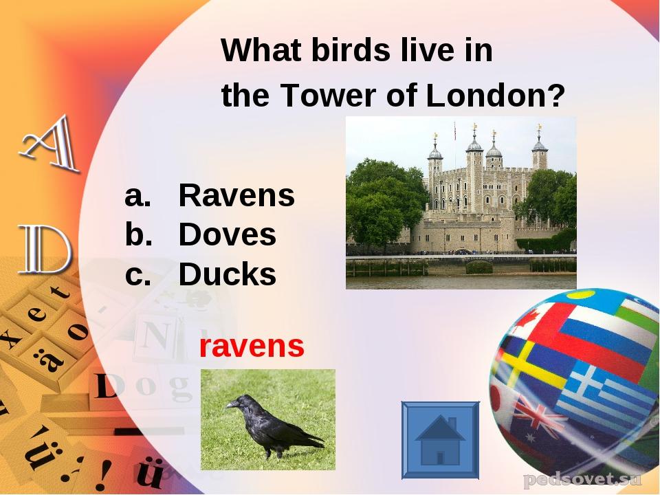 What birds live in the Tower of London? Ravens Doves Ducks ravens