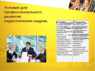 Условия для профессионального развития педагогических кадров.