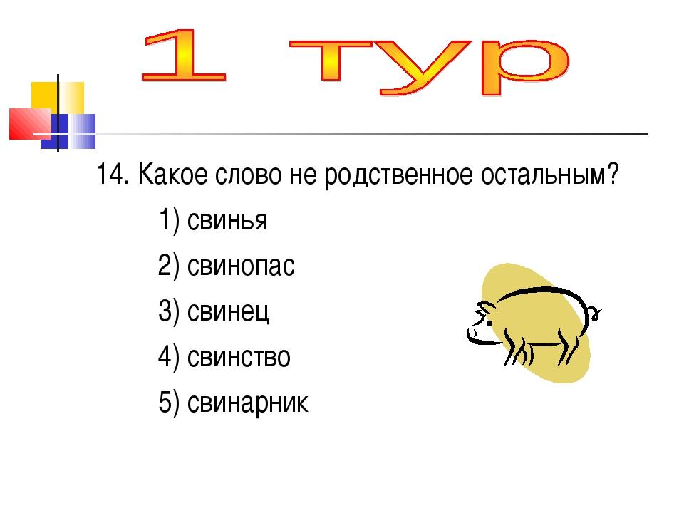 14. Какое слово не родственное остальным? 1) свинья 2) свинопас 3) свинец 4)...