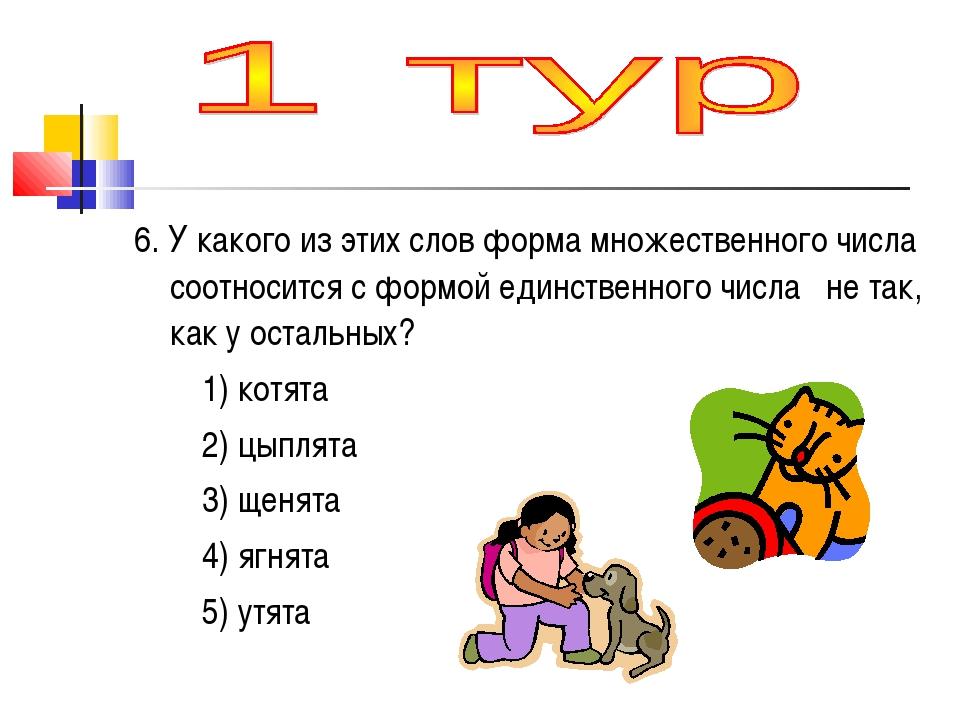 6. У какого из этих слов форма множественного числа соотносится с формой един...