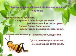 Этапы осуществления деятельности по проекту: Руководители проекта: Смирнова Е