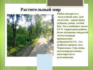 Район находится в лесостепной зоне. Для лесостепи характерны дубравы, рощи, л