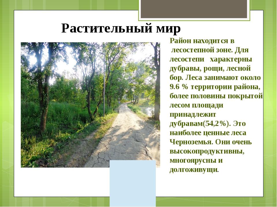 Район находится в лесостепной зоне. Для лесостепи характерны дубравы, рощи, л...