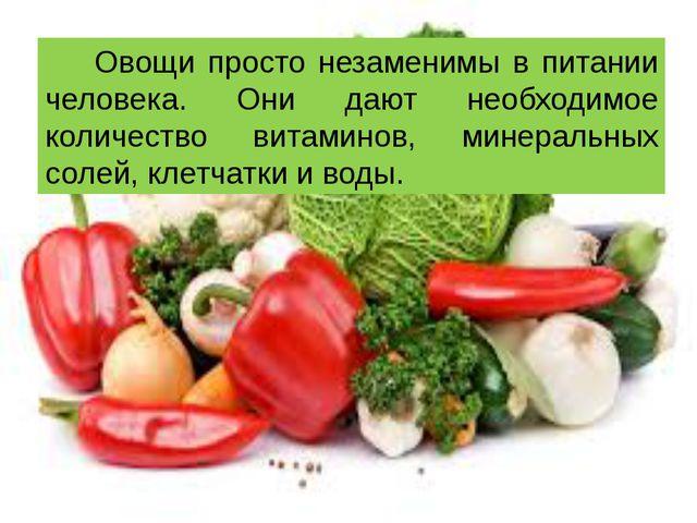 Овощи просто незаменимы в питании человека. Они дают необходимое количество в...